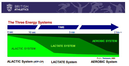 Energy systems and breathing in swimming